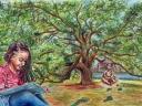 Emancipation Tree